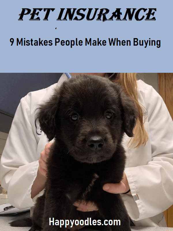 9 common pet insurance mistakes people make
