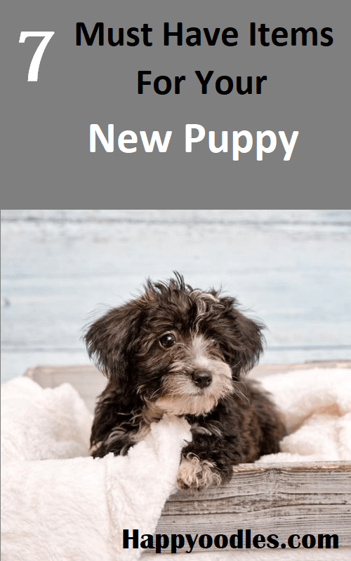 "Top of picture has gray background and ""7 Must Have Items For Your New Puppy"".  Bottom half of picture is a black and white long haired puppy sitting in a gray box on a cream colored fuzzy blanket."