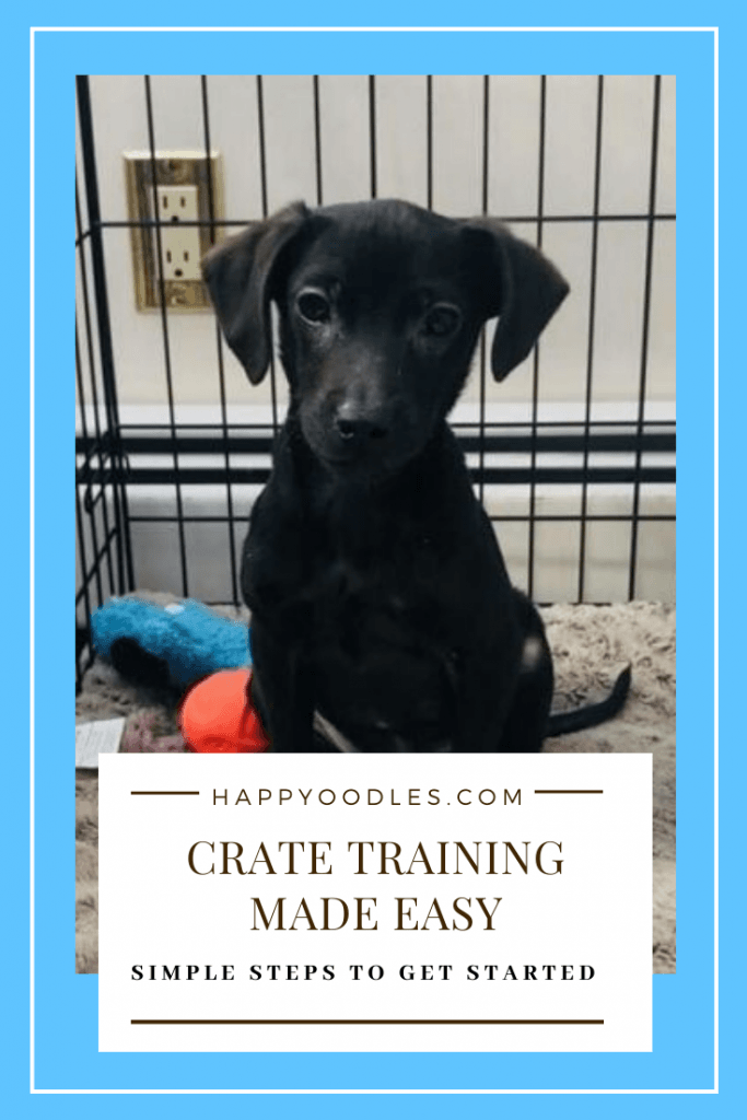 Crate Training a Puppy Made Easy - Simple steps to get you started.