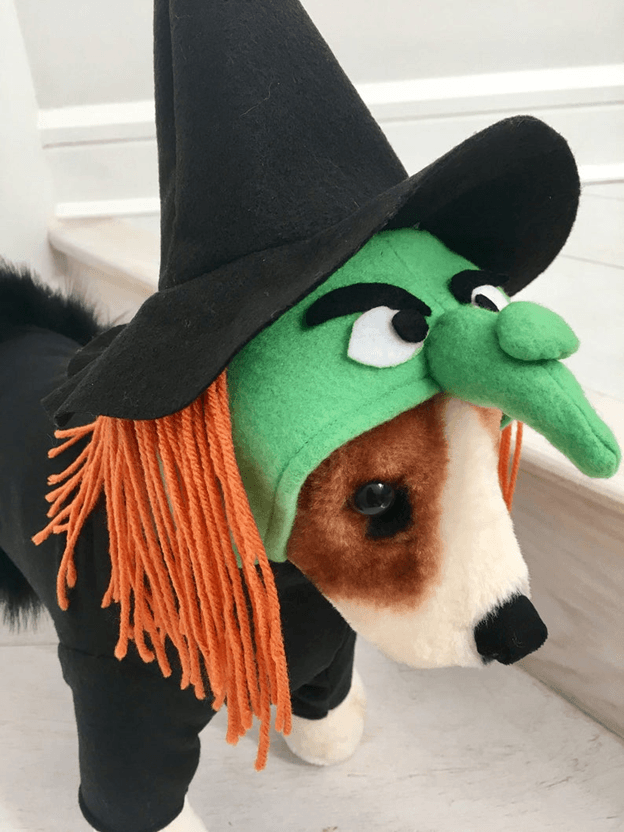 Green Wicked witch costume with dog manikin