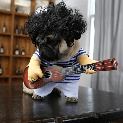 Guitar Playing Halloween costume for dogs