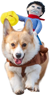 Cowboy dog riding Halloween costume for dogs