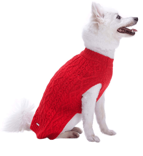 Classic Red Christmas Sweaters for Dogs on White Dog