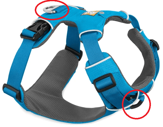 Blue harness showing dual loops. - Part of the best dog harness for doodles