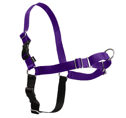 Best Dog Harness for Doodles - the easy walk harness in purple.